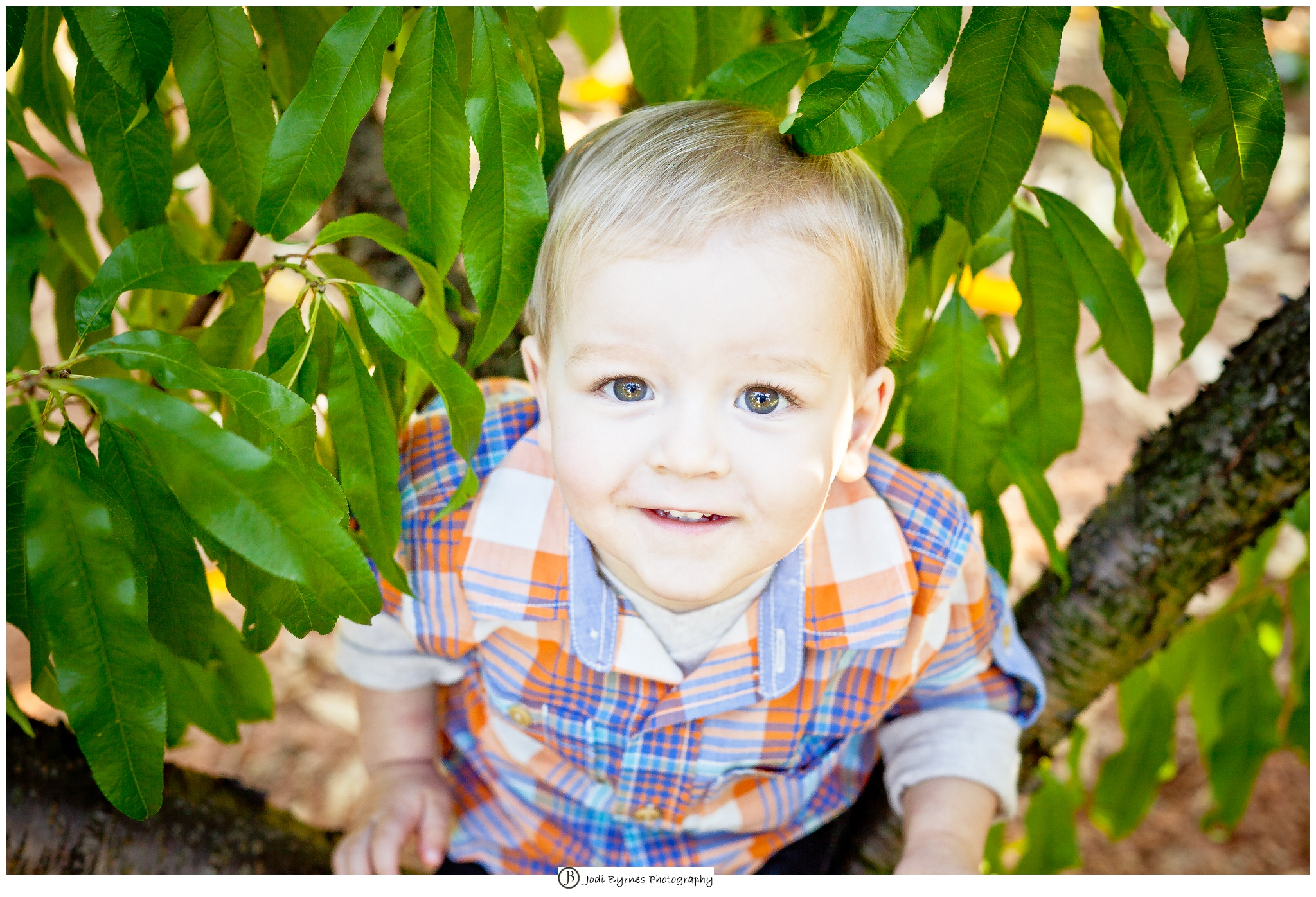 portraits in a peach orchard