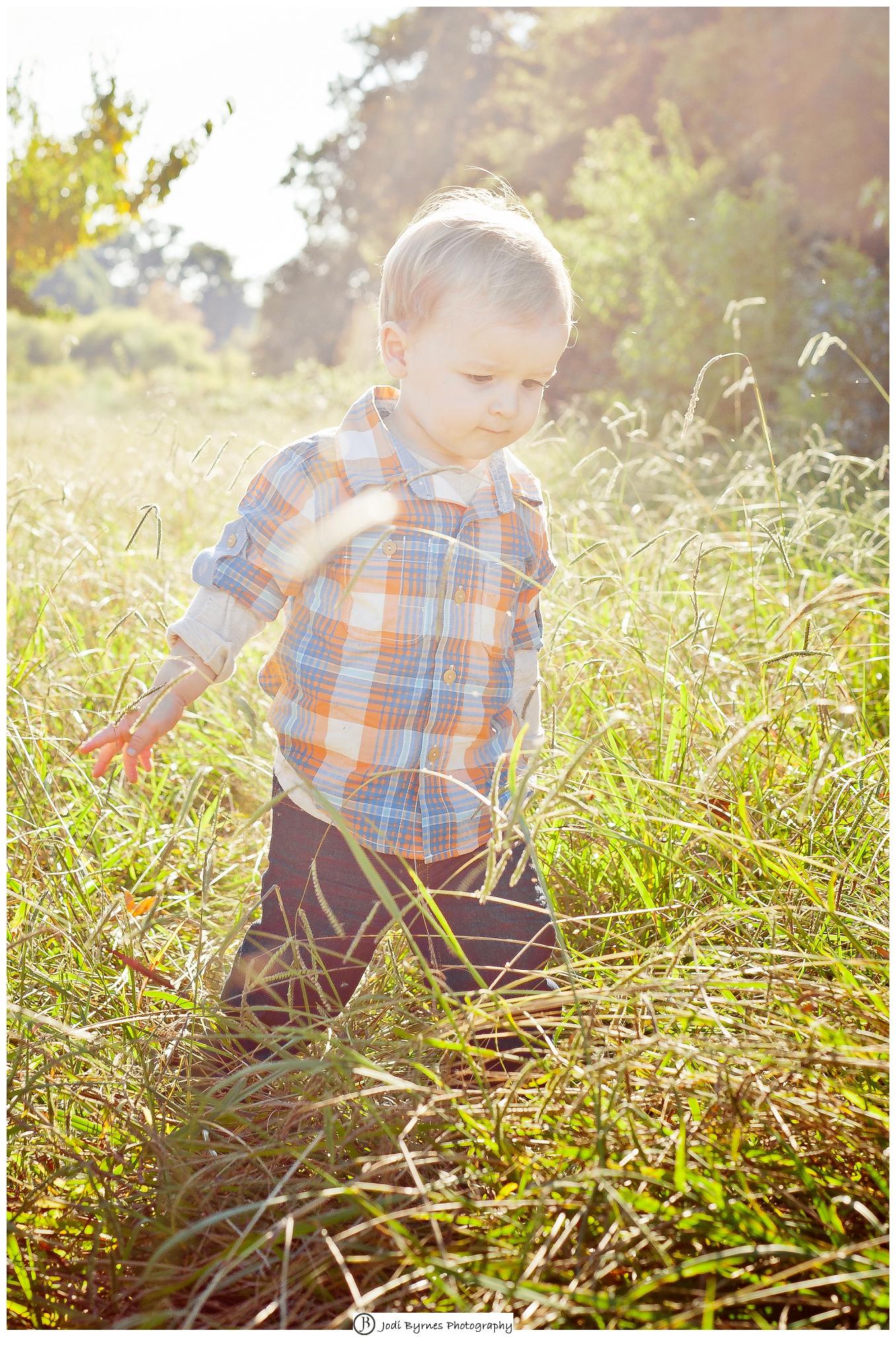 little boy peach orchard
